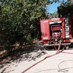 Υπό μερικό έλεγχο η φωτιά που ξέσπασε στο Καλαμάκι Αγιάς